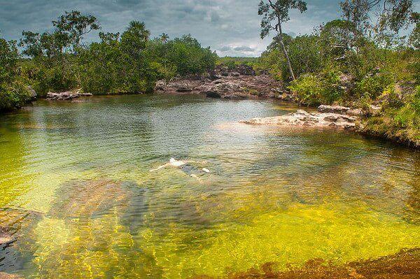 Le Cano Cristales en Colombie, une des plus belles rivières du monde...