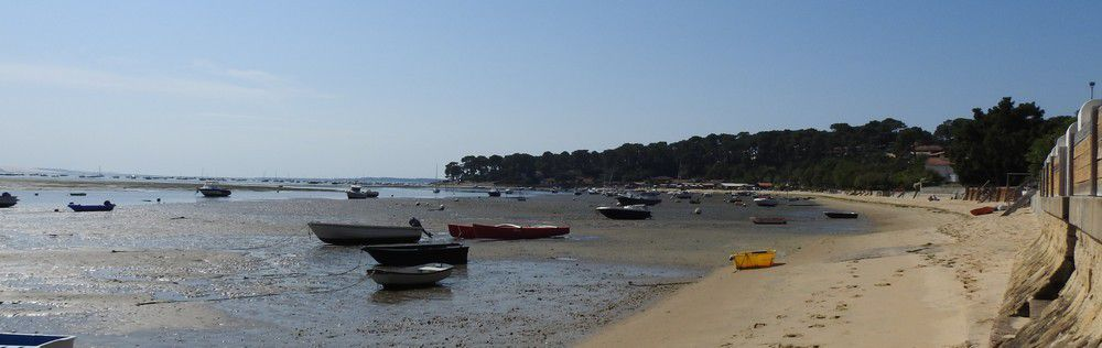 Pique-nique à Petit-Piquey, sur la presqu'île de Lège-Cap-Ferret...