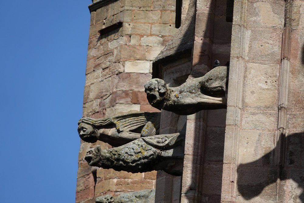 La cathédrale Notre-Dame de l'Assomption de Rodez : les gargouilles...
