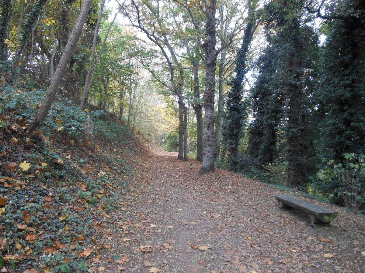 Une journée d'automne au Bois Boissel