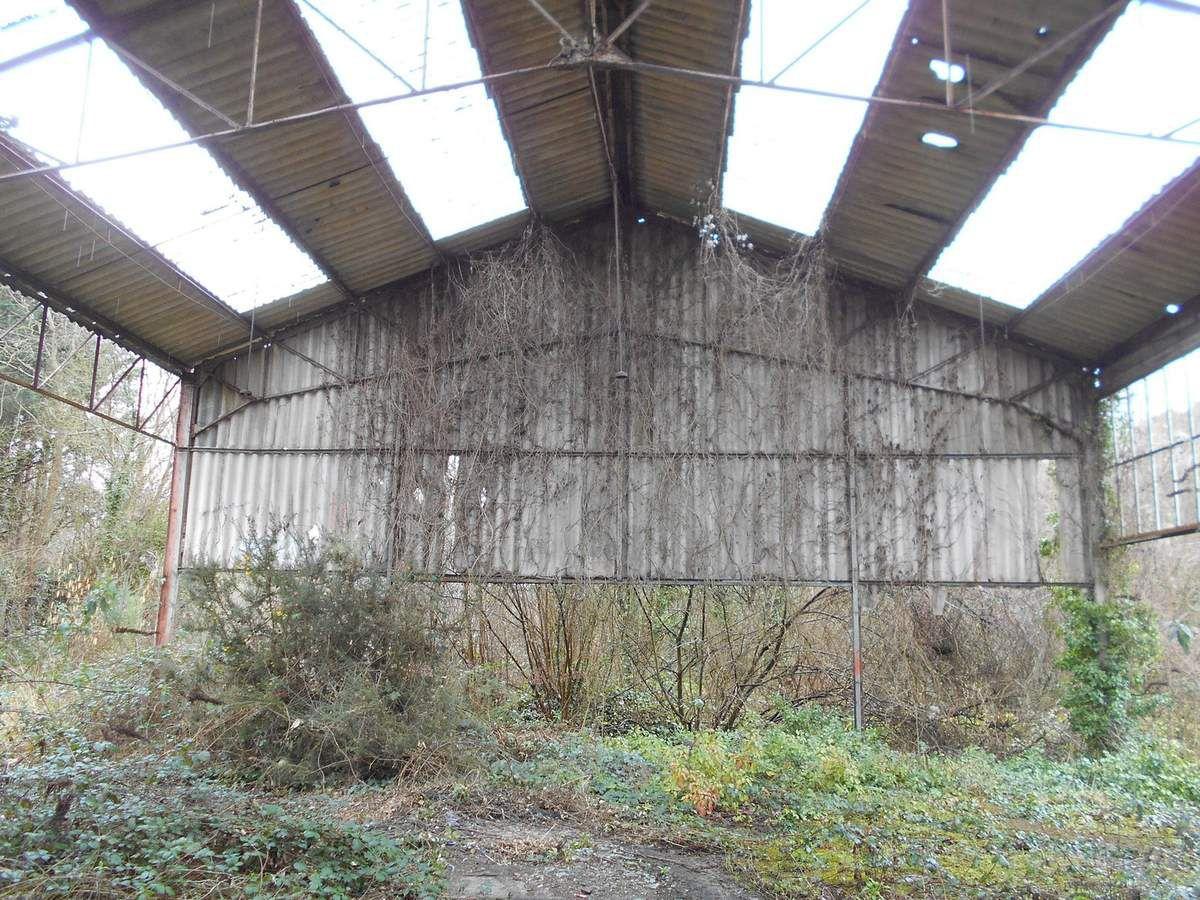 Urbex 22 : Hangar et zone abandonnée