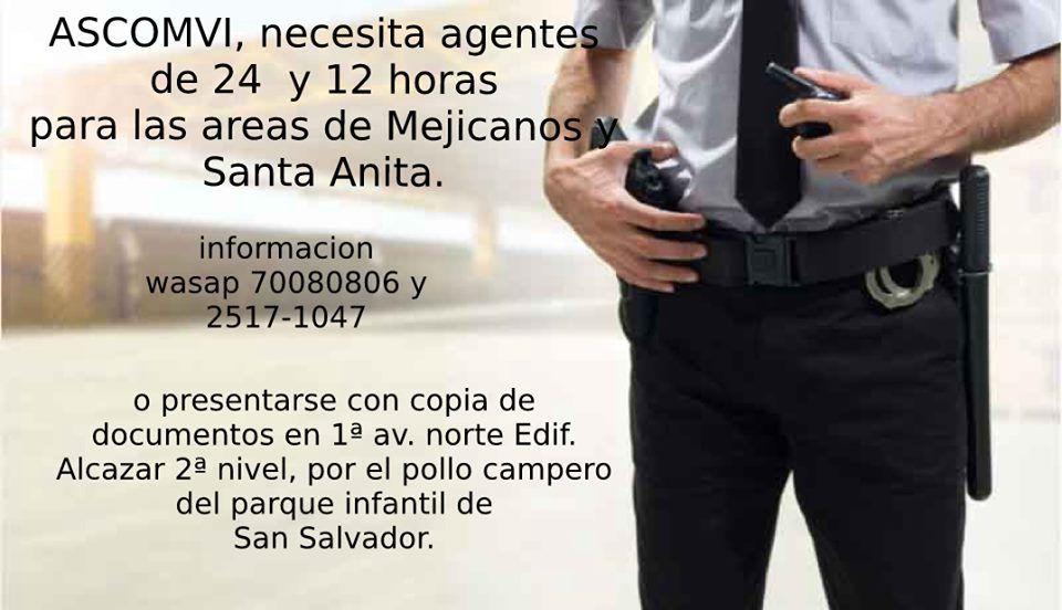 Agente de seguridad