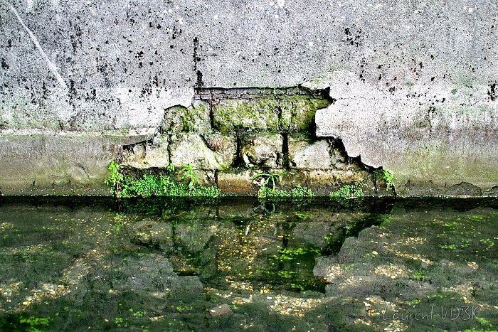 Mur ébréché, crépi décollé, reflet dans l'eau du Robec