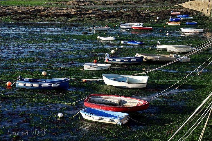 Canots amarés, posés sur les algues à marée basse