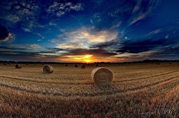 Lever de soleil sur un champ moissonné (très grand angle)