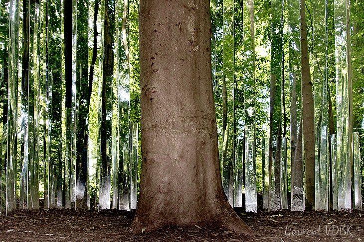 La Forêt Momunentale