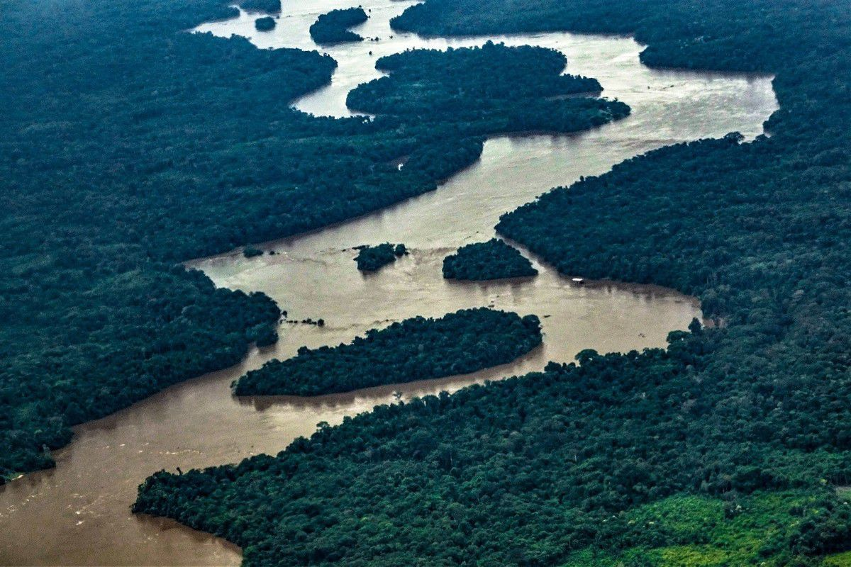 Above the Amazon forest