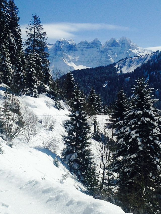The hikes around Châtel : not to be missed, in winter and in the summer