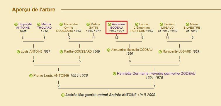 Arbre d'ascendance d'Andrée Antoine (1915-2005) (Geneanet, 04.12.2016). En rouge, l'ancêtre au départ de ma recherche.
