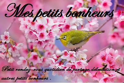 Petits bonheurs 2015 # 8