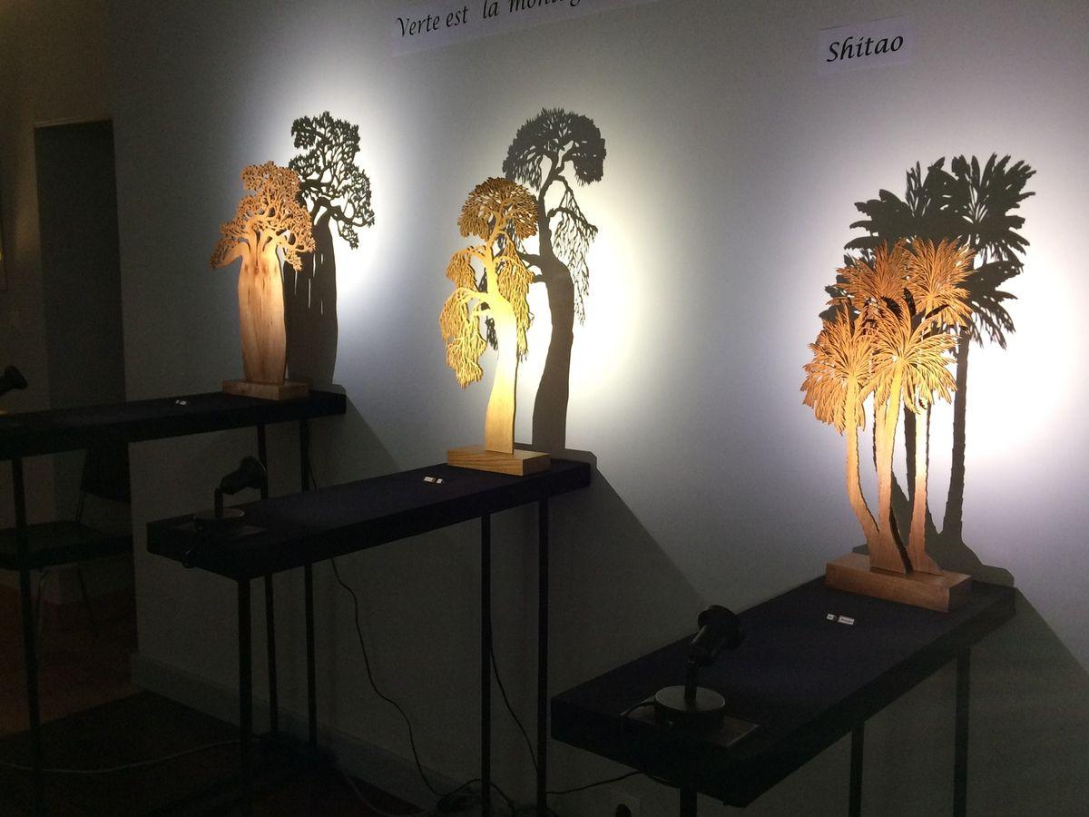 Exposition Silène au musée de la Corbillière