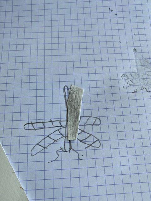 Insecte texturé
