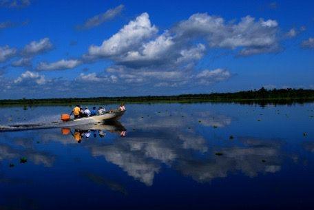 Paso de la Ciénaga de Juan Manuel, desde Puerto Concha. Al sur del Lago de Maracaibo.