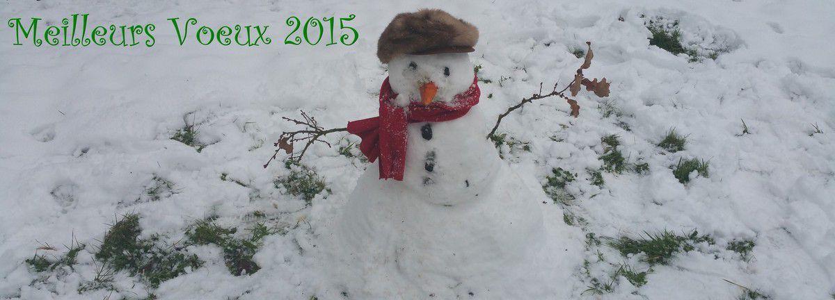 Bonhomme de Neige; Noël; Premier de l'an; Saint Sylvestre; Meilleurs Vœux; 2015.
