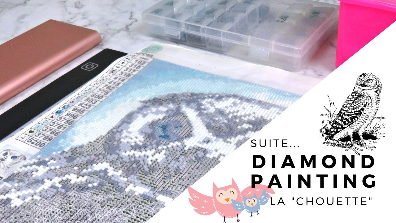 Diamond Painting - Mai - 2020 - La chouette - Strass - Outils - Stylo - Chargeur - Table Lumineuse