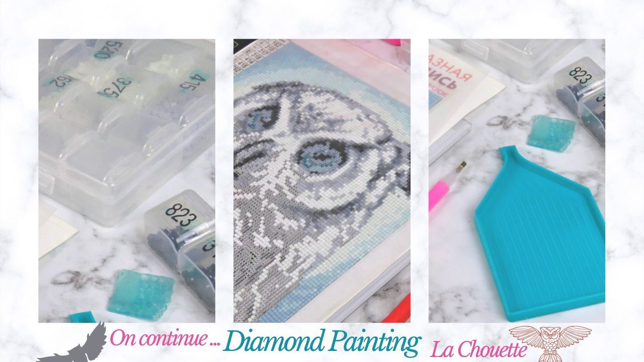 Diamond Painting - Chouette - Strass - Outils - Table Lumineuse - Suite - Mai - La Maison du Canvevas