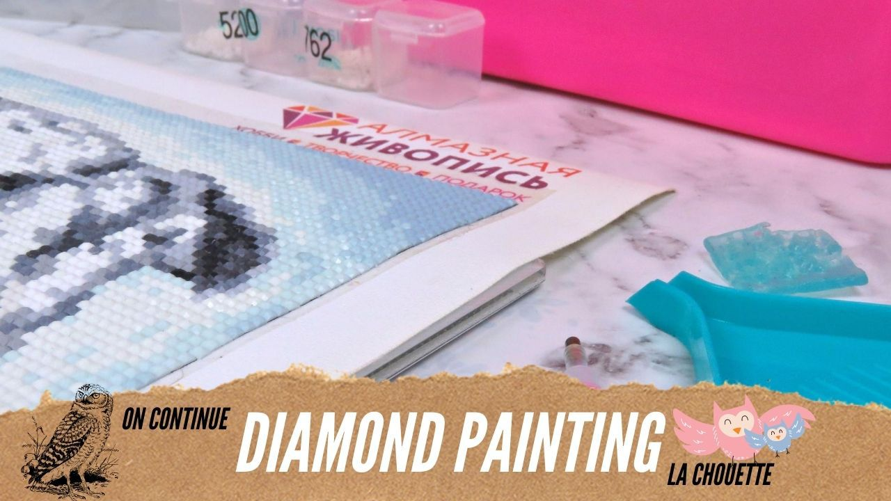 Diamond - Painting - Speed Painting - Chouette - Suite - 2020 - Plaisir - Loisirs - Créatifs - Art Therapy
