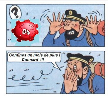 01/05/2020: Coronavirus... Pour continuer d'en rire ( épisode 14)