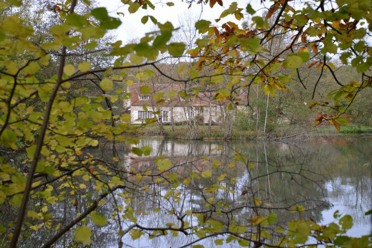 Sortie journée jeudi 10 novembre 2016  Source de l'Orge – Forêt de St Arnoult