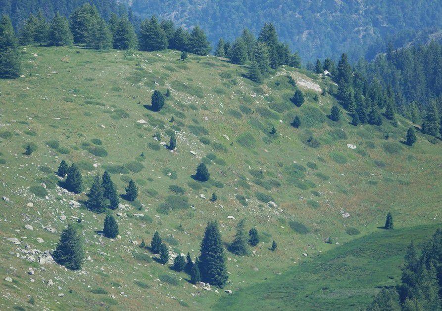 Niélère; Pic Bernadez; Pic de Saverne