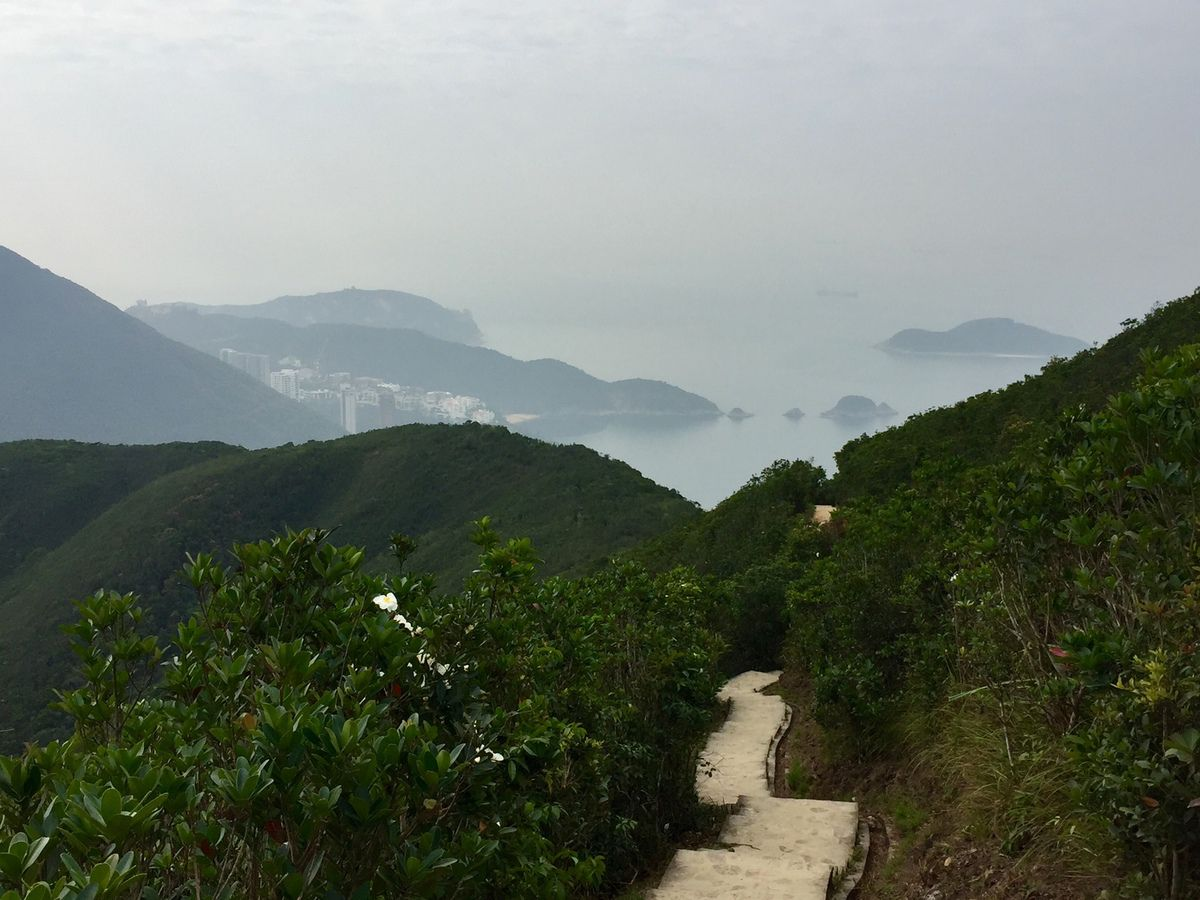 On the top, you will have perfecr view of HK island