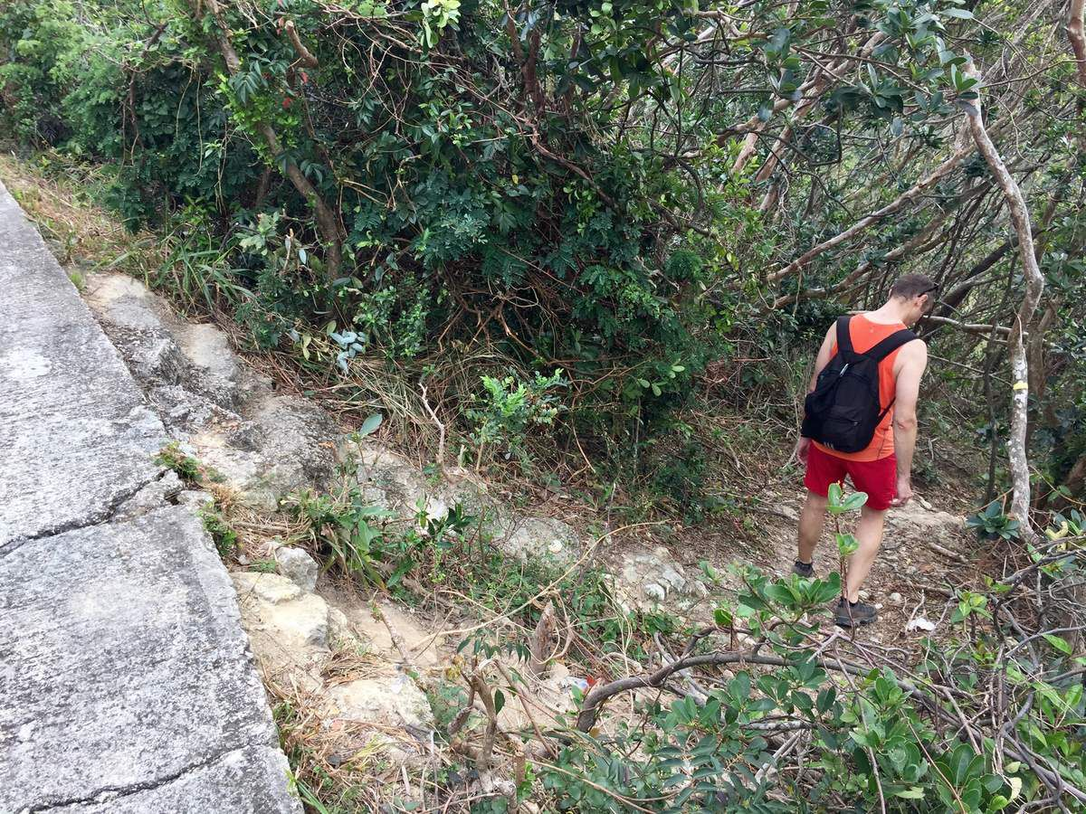 Do not miss this little path to go down to Stanley