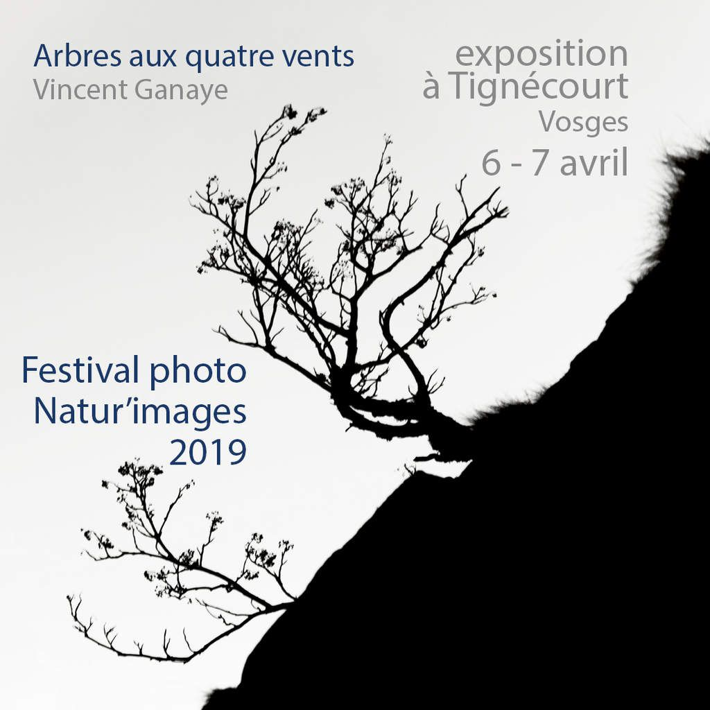 Exposition Natur'images 2019