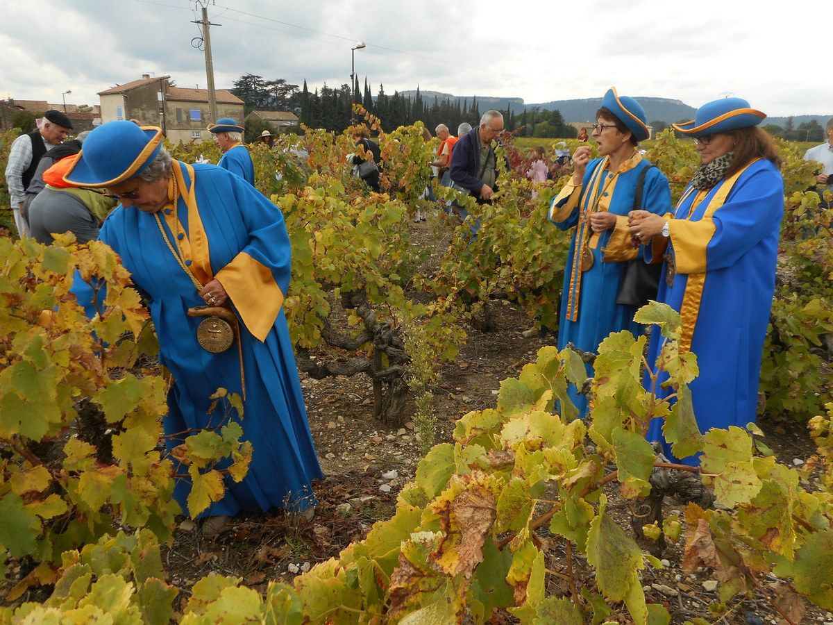 Dimanche 29 OCTOBRE 2017 - Balade dans les vignes du pape à Caderousse (84) Les automobiles d'avant 40 sont attendues, les autres aussi