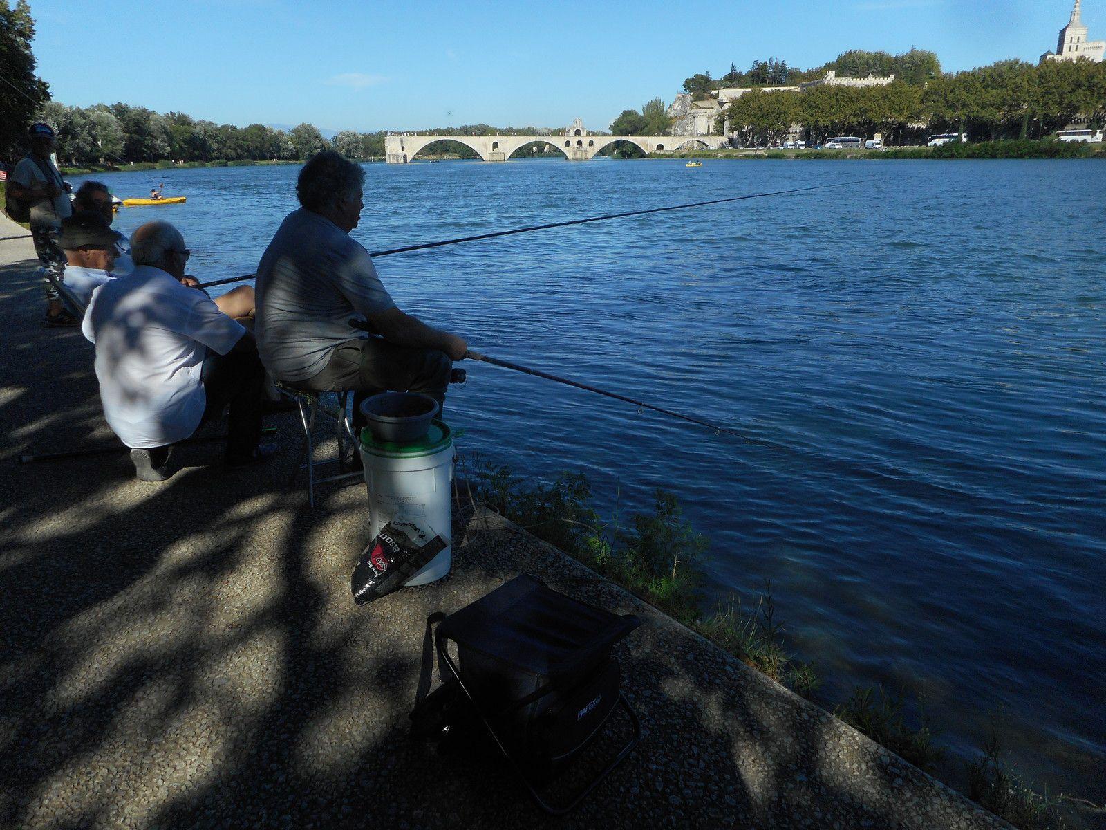 Samedi, entre 3 gouttes de pluie, un petit tour sur les bords du Rhône, sur les traces du LAPIN