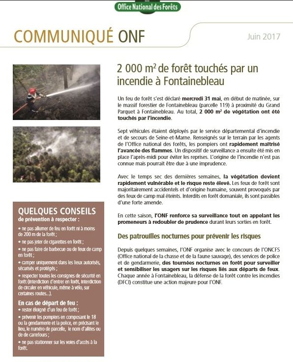 Attention aux feux de forêt !!