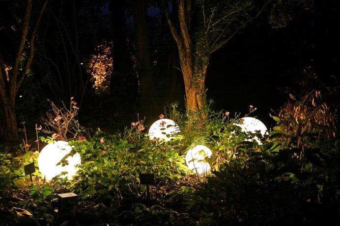 Ausstellung der LWG-Landespflege Veitshöchheim am 25. Oktober: Licht im Garten – Sonne in der Nacht
