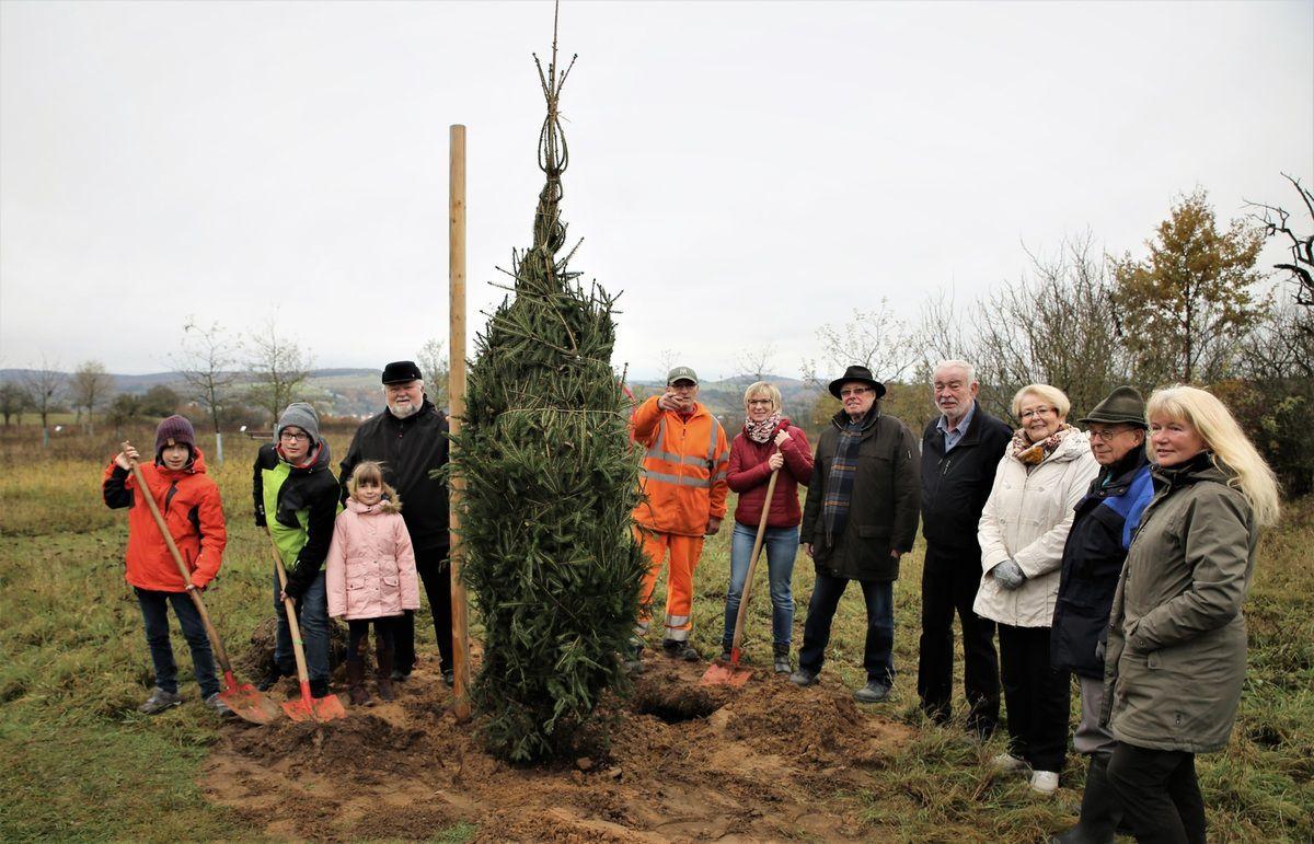 Eine Fichte (Picea abies) , den Baum des Jahres 2017, spendete dem Eigenheimerbund Veitshöchheim Norbert Schinzler (4.v.r.) zum Zeichen der Heimatverbundenheit seiner drei Kinder und sechs Enkel.