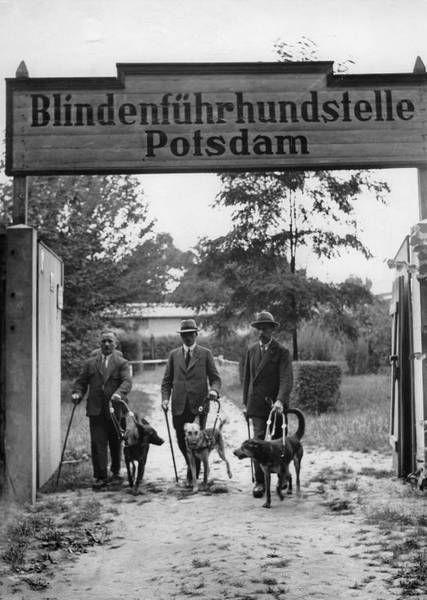 PotsdamSchule