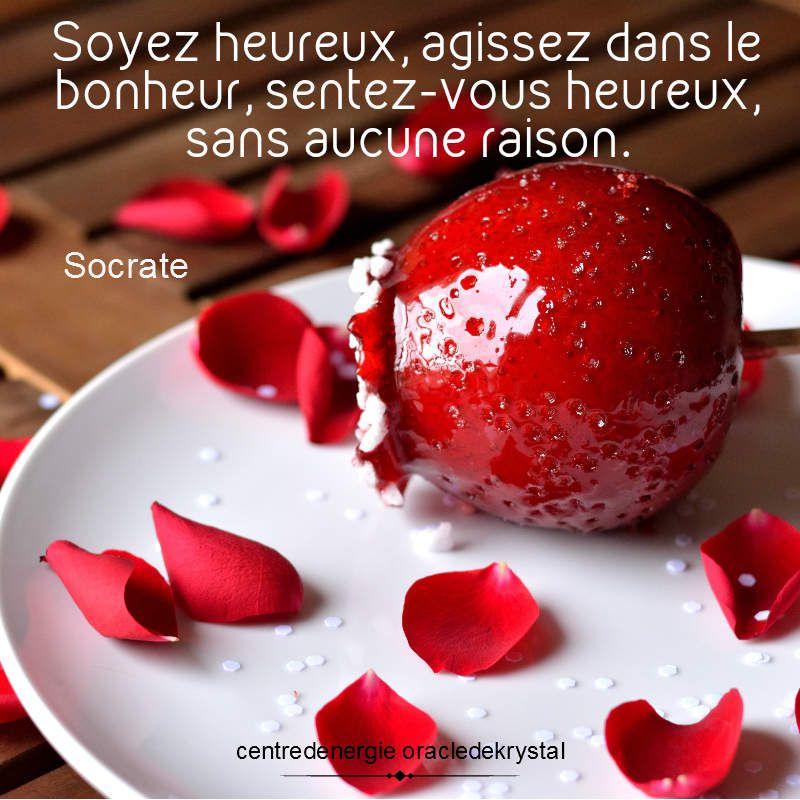 Soyeux heureux - Socrate