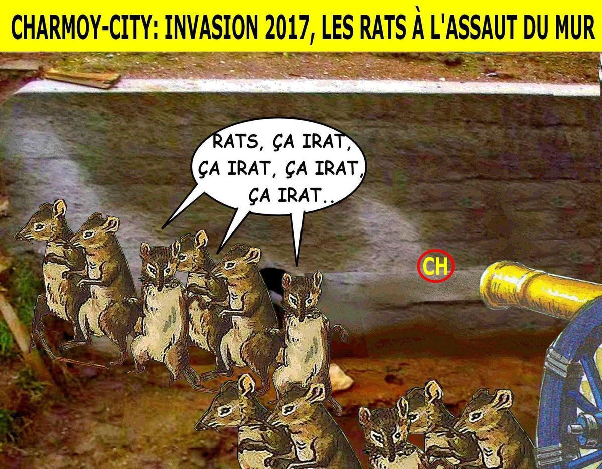 Charmoy-City Invasion 2017, les rats à l'assaut du mur