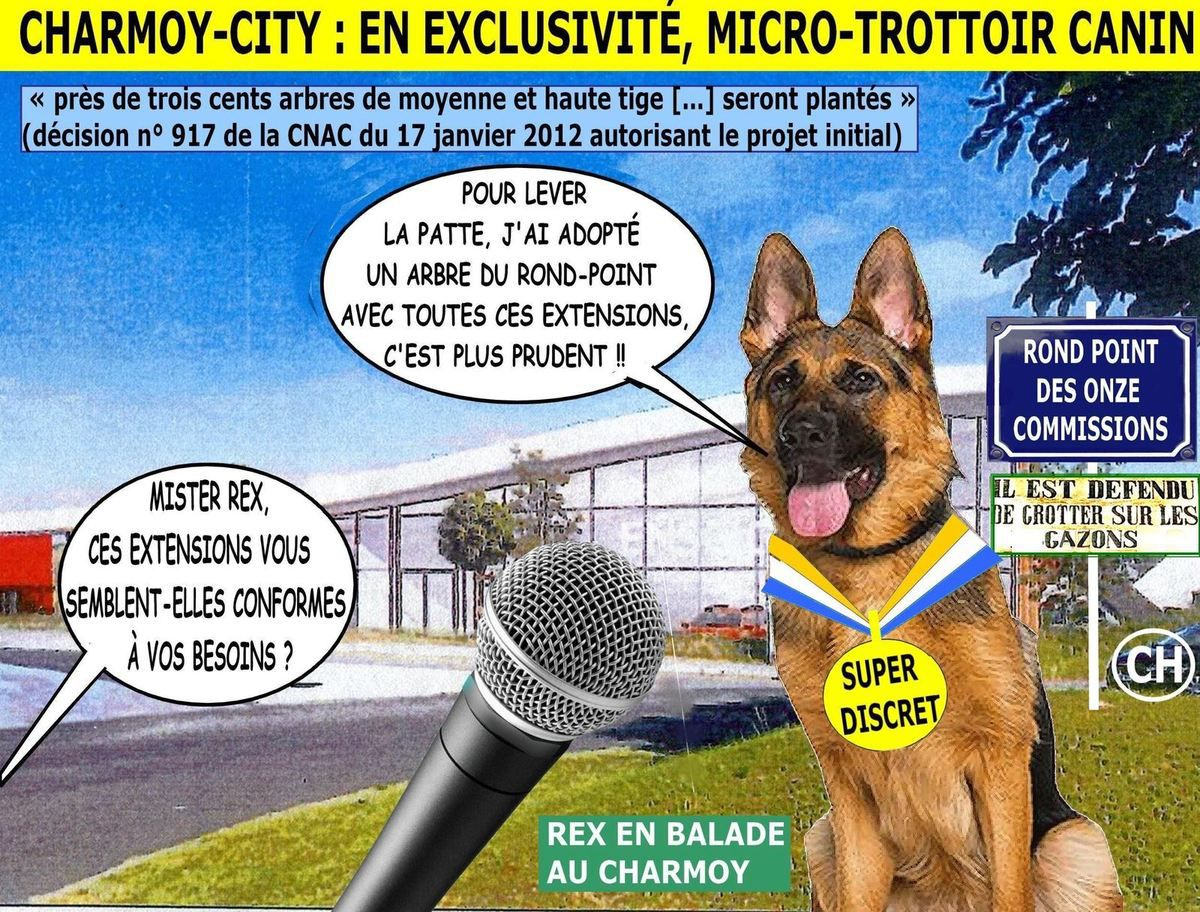 Charmoy-City, en exclusivité micro-trottoir canin