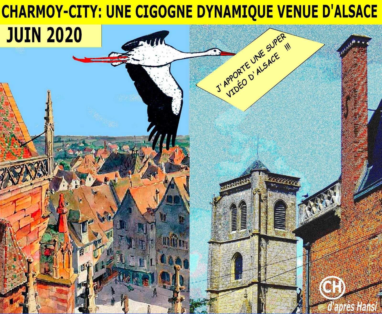 Charmoy-city, une cigogne dynamique venue d'Alsace.jpg