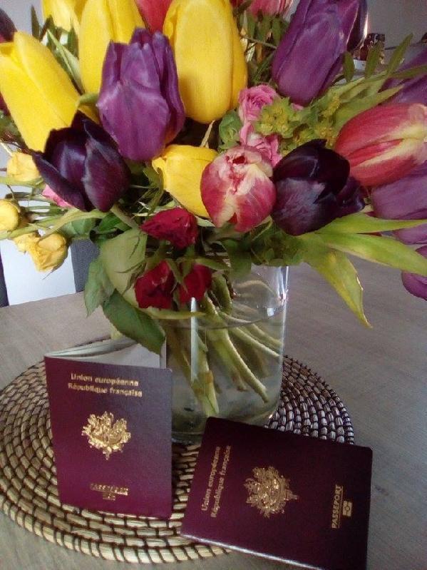 Passeports renouvellés