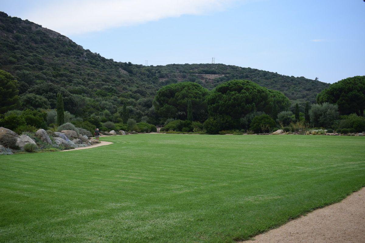 CORSE : Le Parc de Saleccia