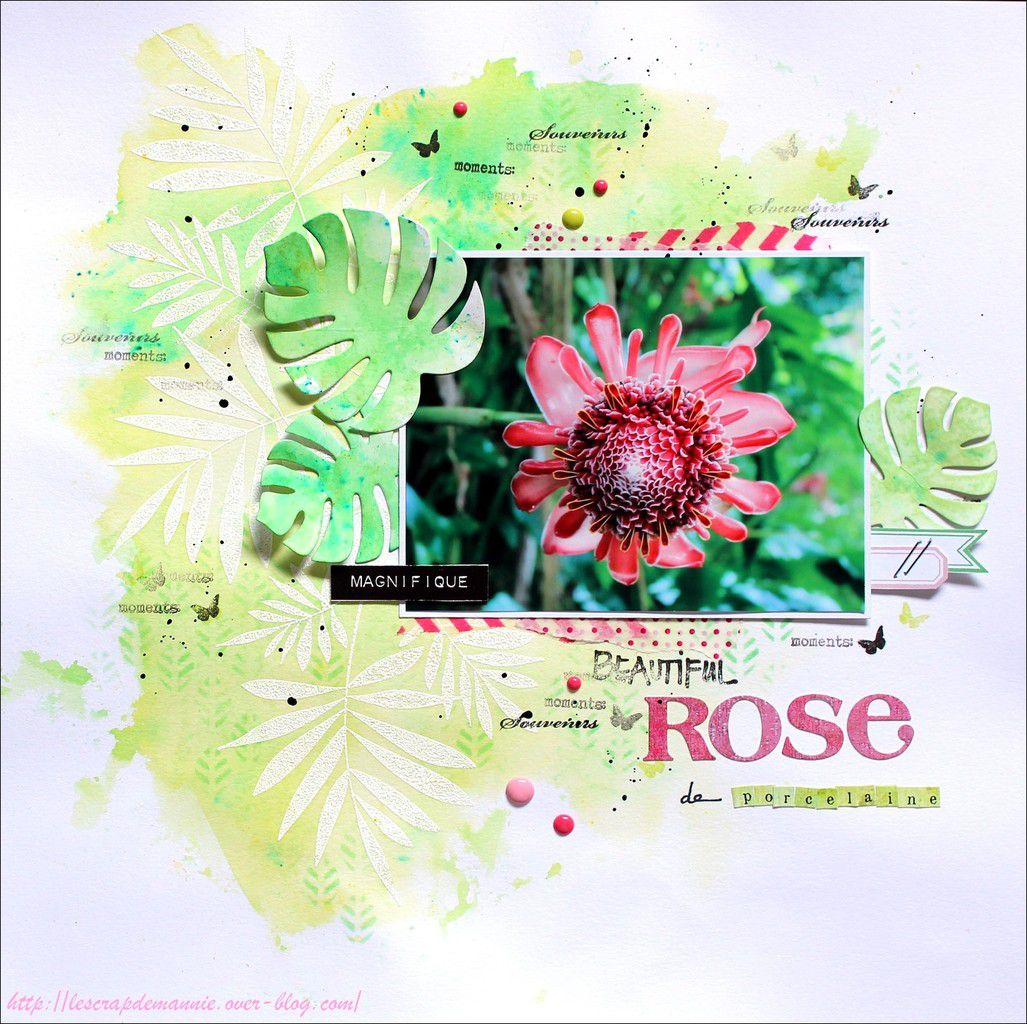 Rose de  porcelaine / pages  multi-contraintes MIS