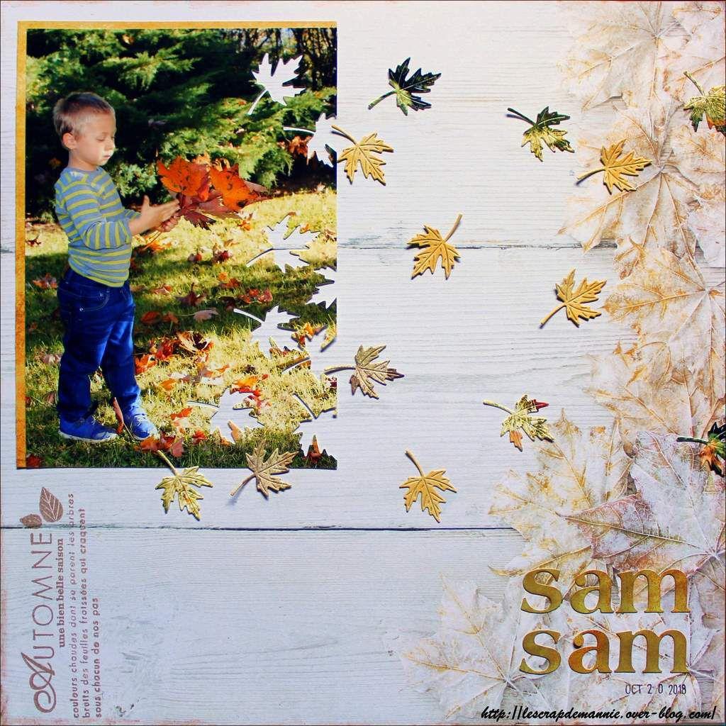 SAMSAM / Défi page de  novembre / DT du CBBB
