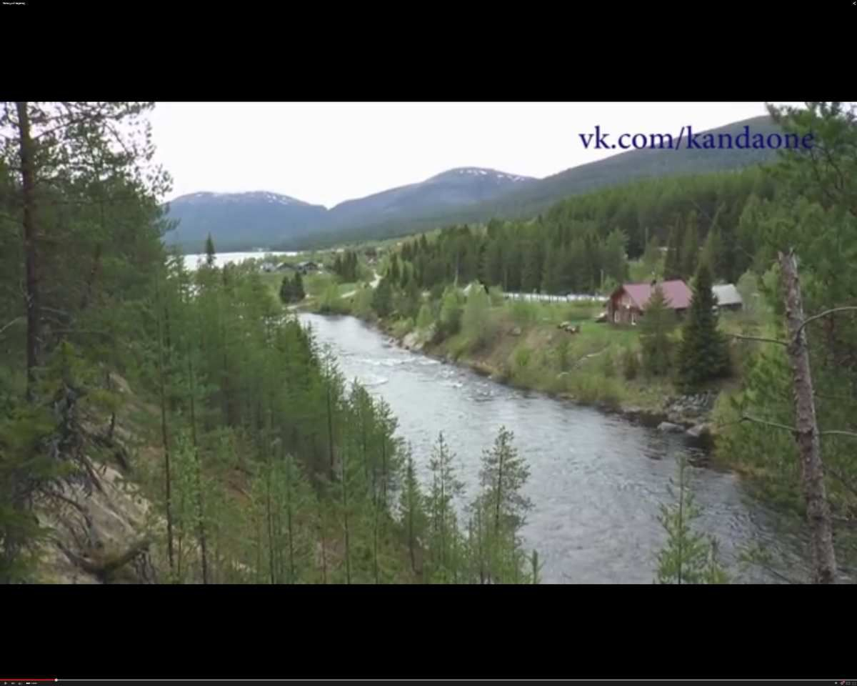 Forêts vierges du Nord russe