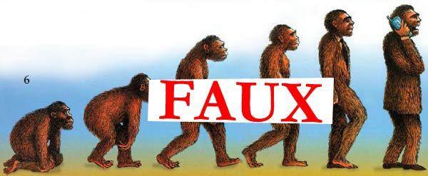 L'erreur évolutionniste