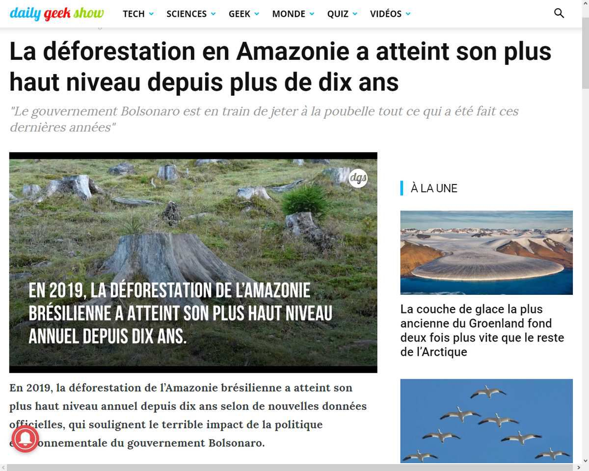 Source: Par Yann Contegat, le 23 novembre 2019 https://dailygeekshow.com/deforestation-record-amazonie-2019/