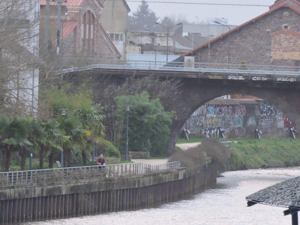 Grisée aux graffitis