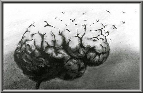 Se fier à son intelligence fait partie de la stupidité