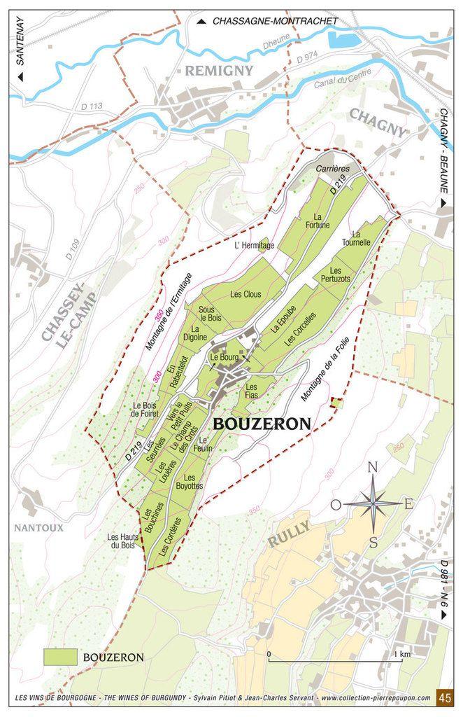 Le vignoble de Bouzeron en Côte Châlonnaise