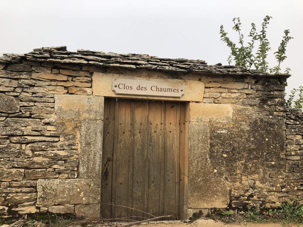 Corton Les Chaumes: un cru classé «second A «