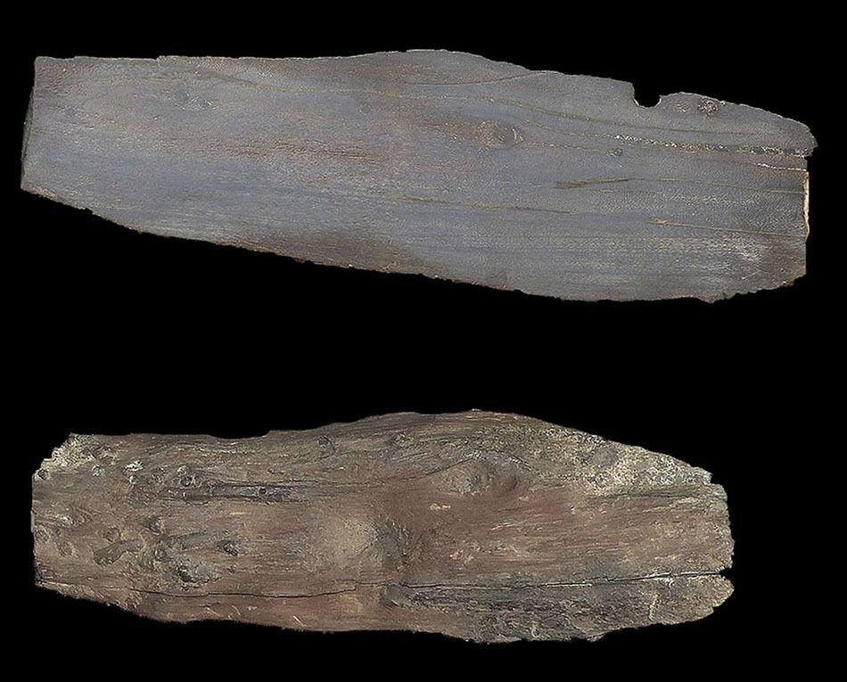 Bois fossile Callovien de Villers sur Mer 14.
