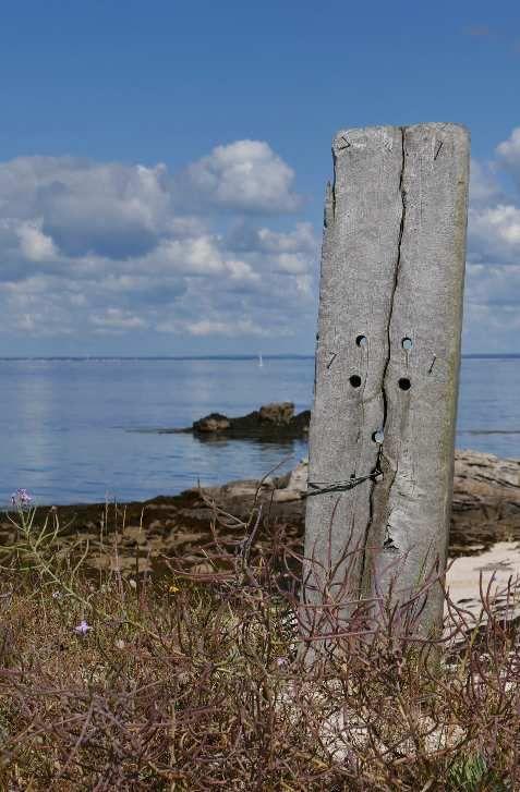 Îles de Glénan, photo lavieb-aile.